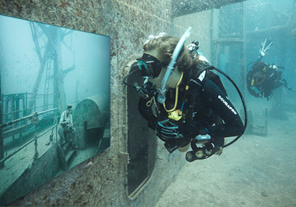 Awesome Underwater Art Gallery By Andreas Franke 5