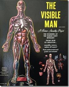 The Visible Man model kit