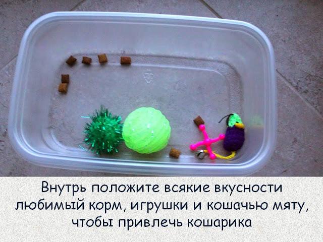 как сделать игрушки для кошек своими руками