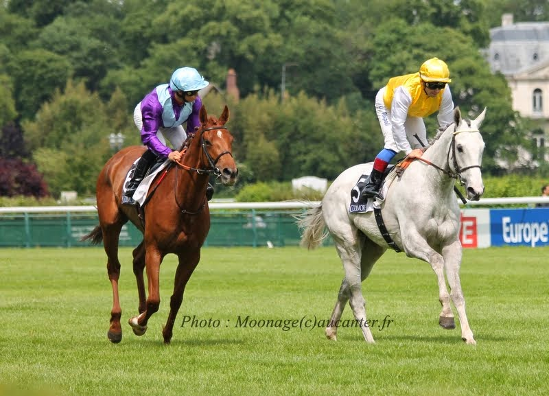 Photos Longchamp 25-05-2014 IMG_1239