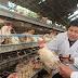 Primer contagio humano de cepa de gripe aviar es confirmado en China
