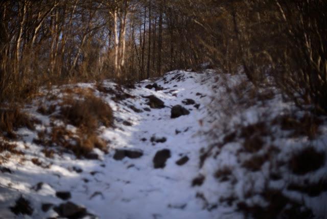 飯森山 冬