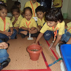 Planting A Pot ActivityWKSN (Nursery) 12/08/2015