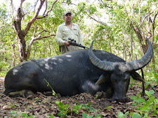 Mr Andrey Roketskiy with a great buffalo bull taken in heavy brush