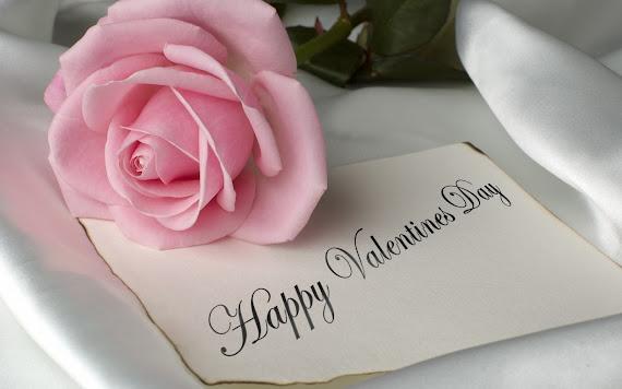 Valentinovo besplatne ljubavne slike čestitke pozadine za desktop 1680x1050 free download Valentines day 14 veljača biljke ruža