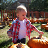 Pumpkin Patch - 114_6531.JPG