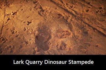 lark-quarry-dinosaur-trackways