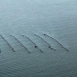 Coastal Sept 27, 2013 070 (20)
