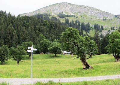Blick zur Schwarzenberghütte Hindelang Allgäu