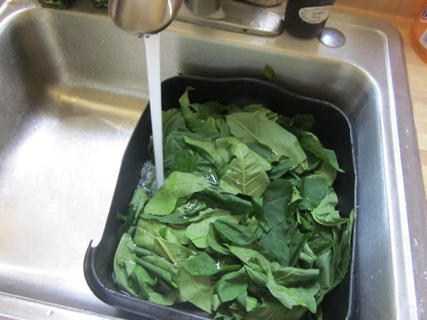 Soak your greens in cold water for 20-30 minutes and wash very thoroughly. Dry...