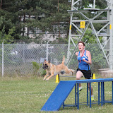ATM Cup Sporthunde Franken - ATM%2BCup%2BSporthunde%2BFranken%2B435.JPG