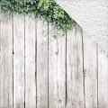 Kaisercraft: Ivy Wall - Wandering Ivy