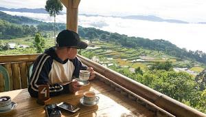 Sruput Kopi Sambil Nikmati Alam Toraja dari Ketinggian Sesean, Dijamin Gak Nyesal