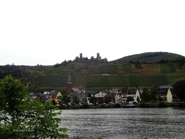 passeando - Passeando pela Suíça - 2012 - Página 21 DSC08568