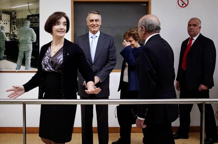 PR nomeia investigadora Elvira Fortunato para presidente das comemorações do 10 de Junho