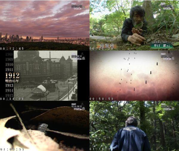 [TV-Variety] 完全版 明治神宮 不思議の森 – NHK 2016.01.02