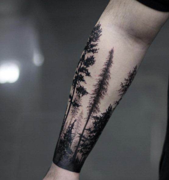 Esta floresta
