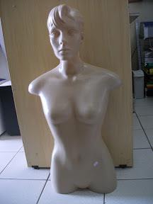 foto 1 de Busto Plástico com Cabeça