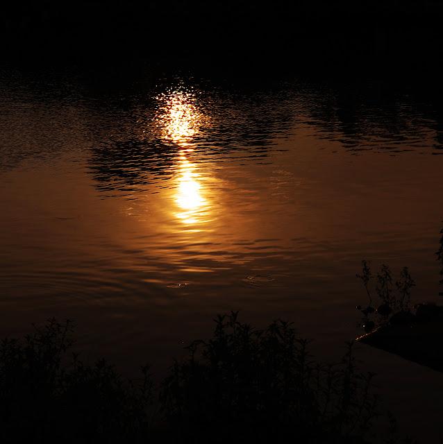 就黃昏吧...................