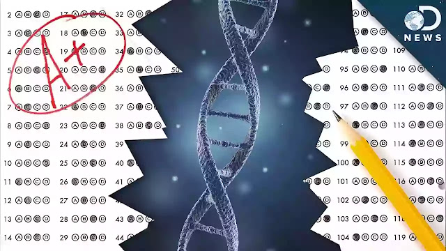 Genes For Your Grades