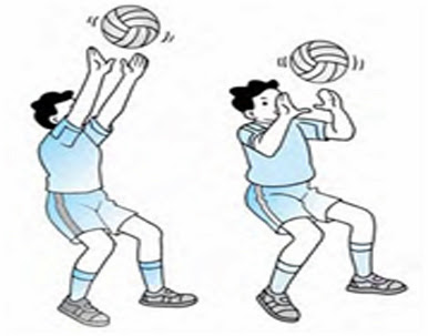 teknik-dasar-permainan-bola-voli