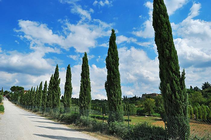 Toscana09.JPG