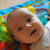 Shirley Pheasant's profile photo