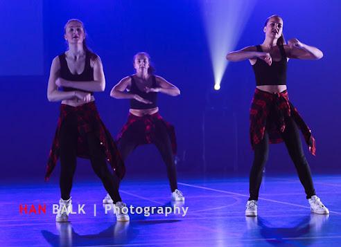 Han Balk Voorster Dansdag 2016-4454-2.jpg