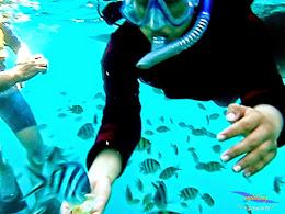 explore-pulau-pramuka-olp-15-16-06-2013-05