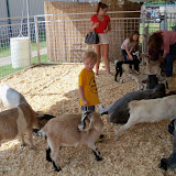Fort Bend County Fair 2015 - 100_0202.JPG