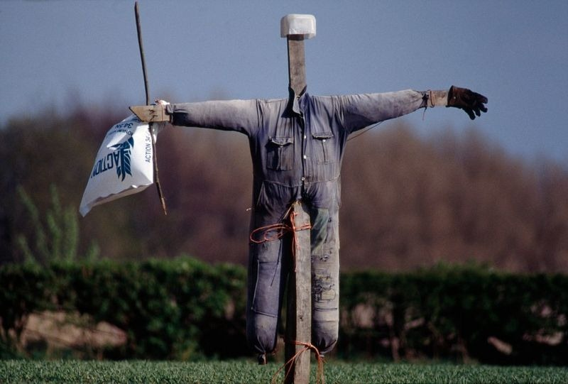 colin-garratt-scarecrows-3