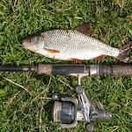 20140825_Fishing_Lysyn_042.jpg