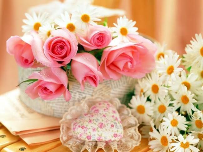 Mandurah Florists: Popular Flowers From Australia