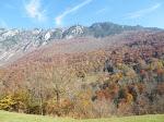 14 au 16 11 15 - Parc national de Biograska Gora, P.N. du lac de Skadar et Petrovac