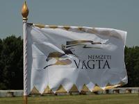 A Vágta zászlaja.jpg