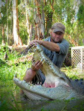 This old croc has a very large skull and a good set of  teeth. As a result he was a very successful hunter.