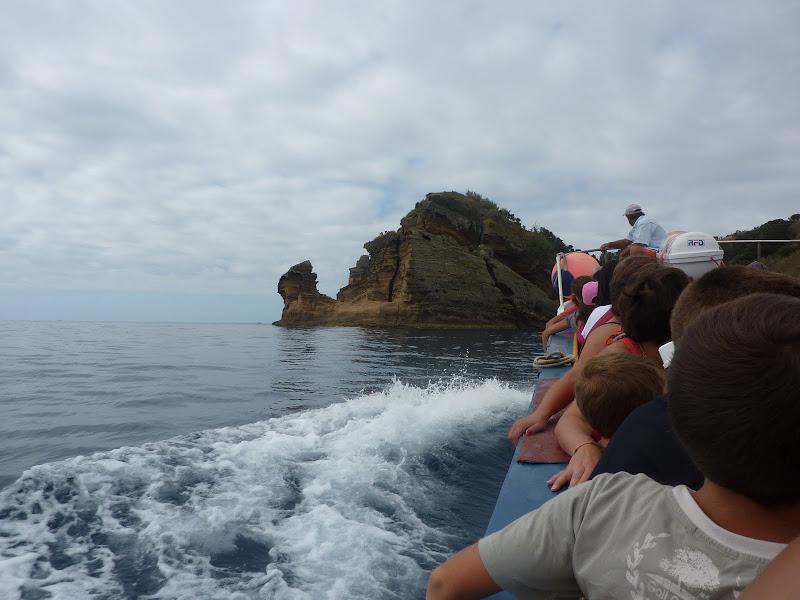 Açores- Natureza viva P1000393