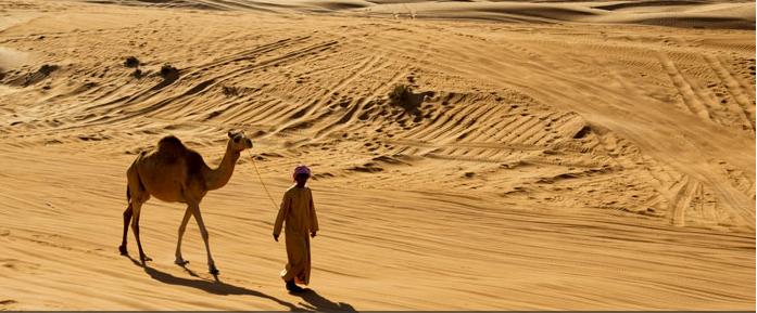 Oman - desert scene