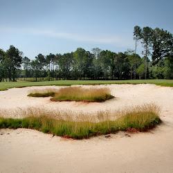 Lonnie Poole Golf Course's profile photo