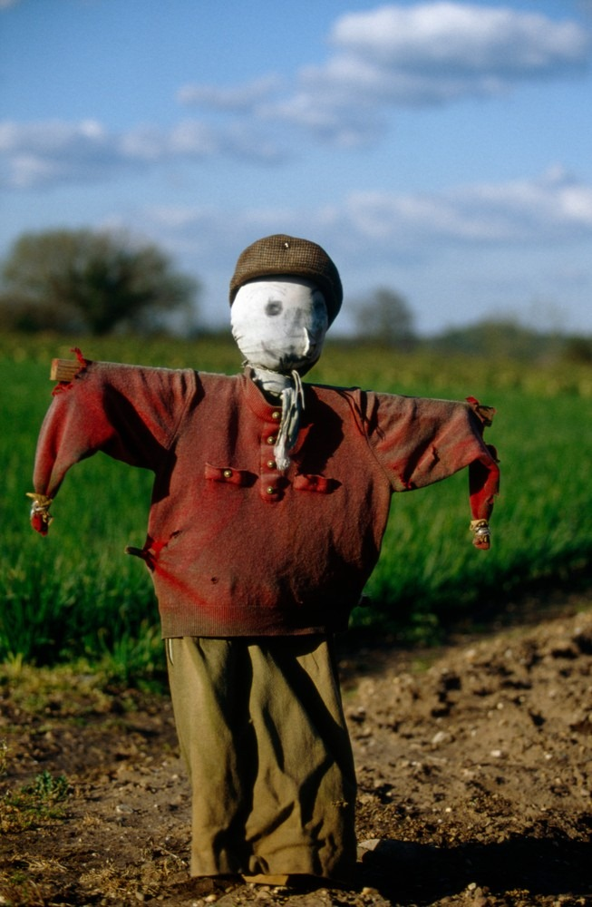 colin-garratt-scarecrows-8