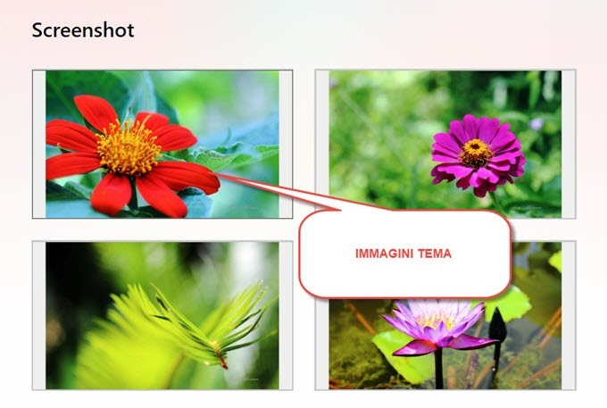 screenshot-immagini-tema