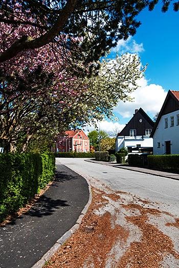 Lund35.jpg