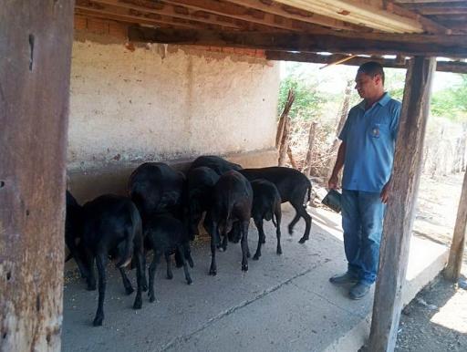 Parceria entre Senar-PB e Prefeitura de Monteiro começa a beneficiar 30 produtores locais com assistência técnica e gerencial