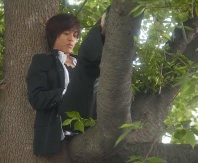 Matsuzaka Tori