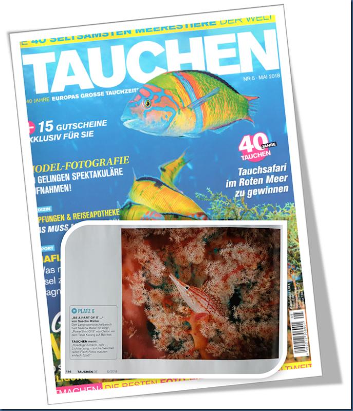 6. Platz Zeitschrift Tauchen Ausgabe Mai 2018