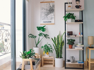 The 4 Ways to Keep Indoor Air Clean