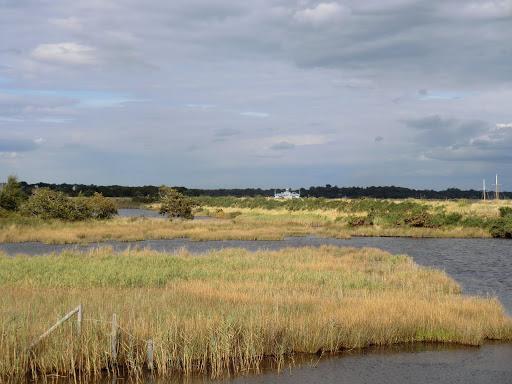 CIMG4475 Salterns Marsh
