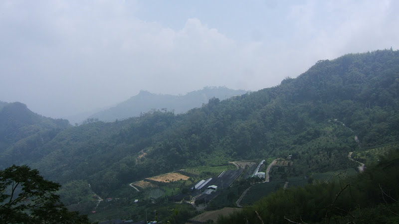 On the way to Alishan
