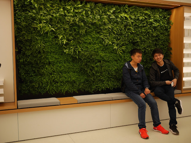 live plants in a wall at the SM Lifestyle Center Apple Store in Xiamen, China