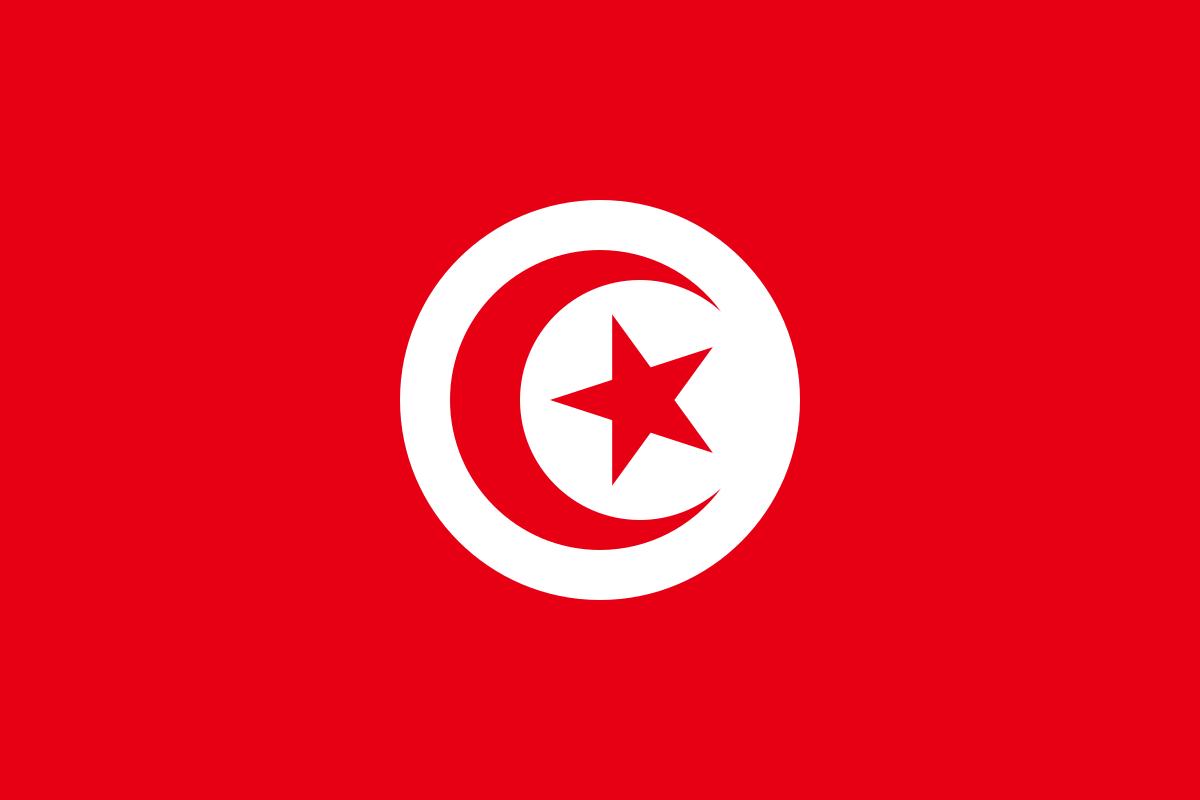 파일:튀니지 국기.png